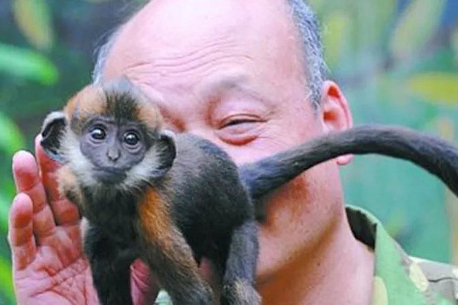 18. Monkey Finder
